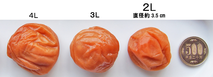梅干のサイズ2Lサイズ