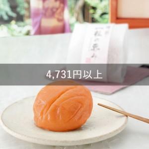 4,731円以上