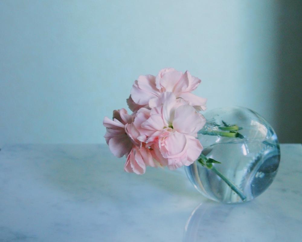 みかん梅酒花瓶